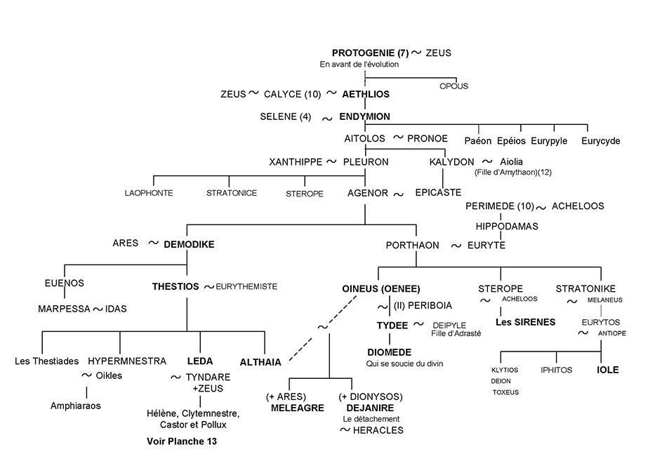 Léda, Méléagre, Déjanire et Diomède - Arbre généalogique 9 - Mythologie grecque