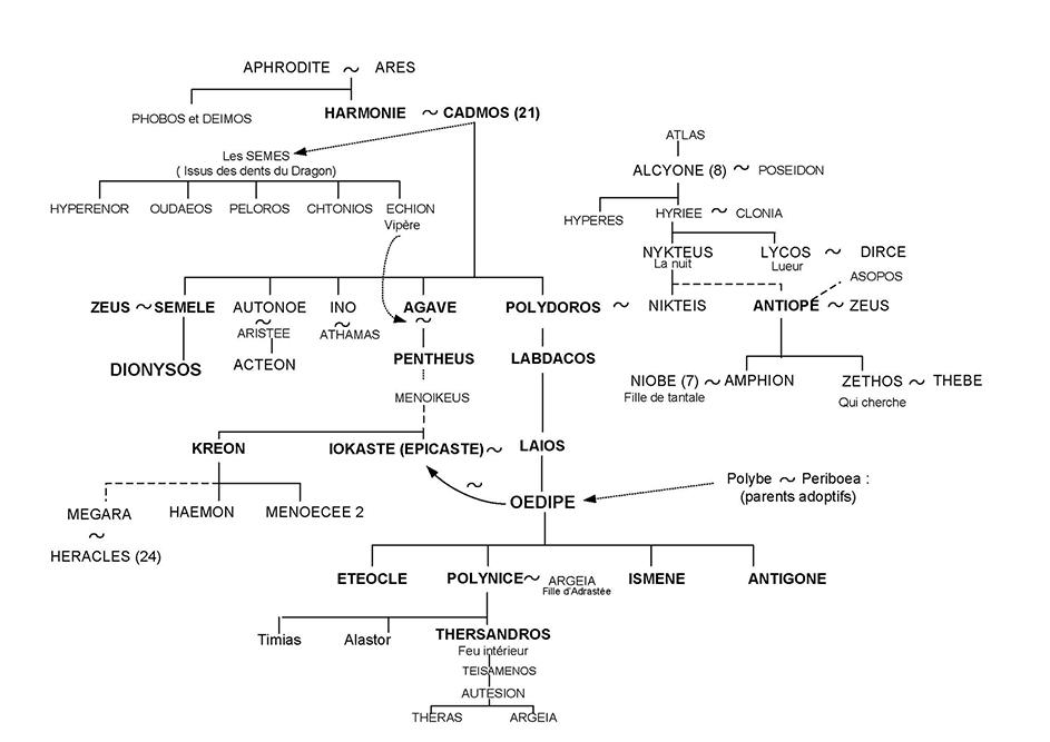 Dionysos et Oedipe - Arbre généalogique 22 - Mythologie grecque