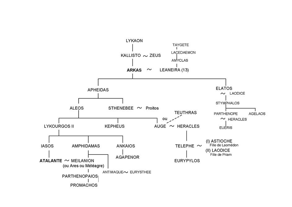 Atalante -Arbre généalogique 27 - Mythologie grecque
