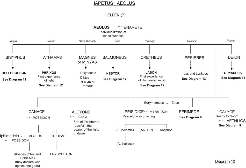 Aeolus - Family tree 10 - Greek mythology